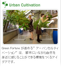 Urban Cultivation
