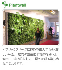 Plantwall